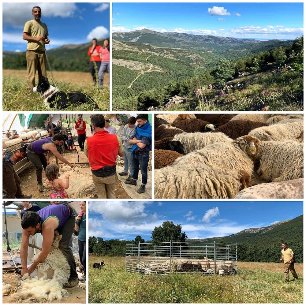 ¡Continúa nuestro camino por la Soberanía Alimentaria y un Mundo Rural Vivo!