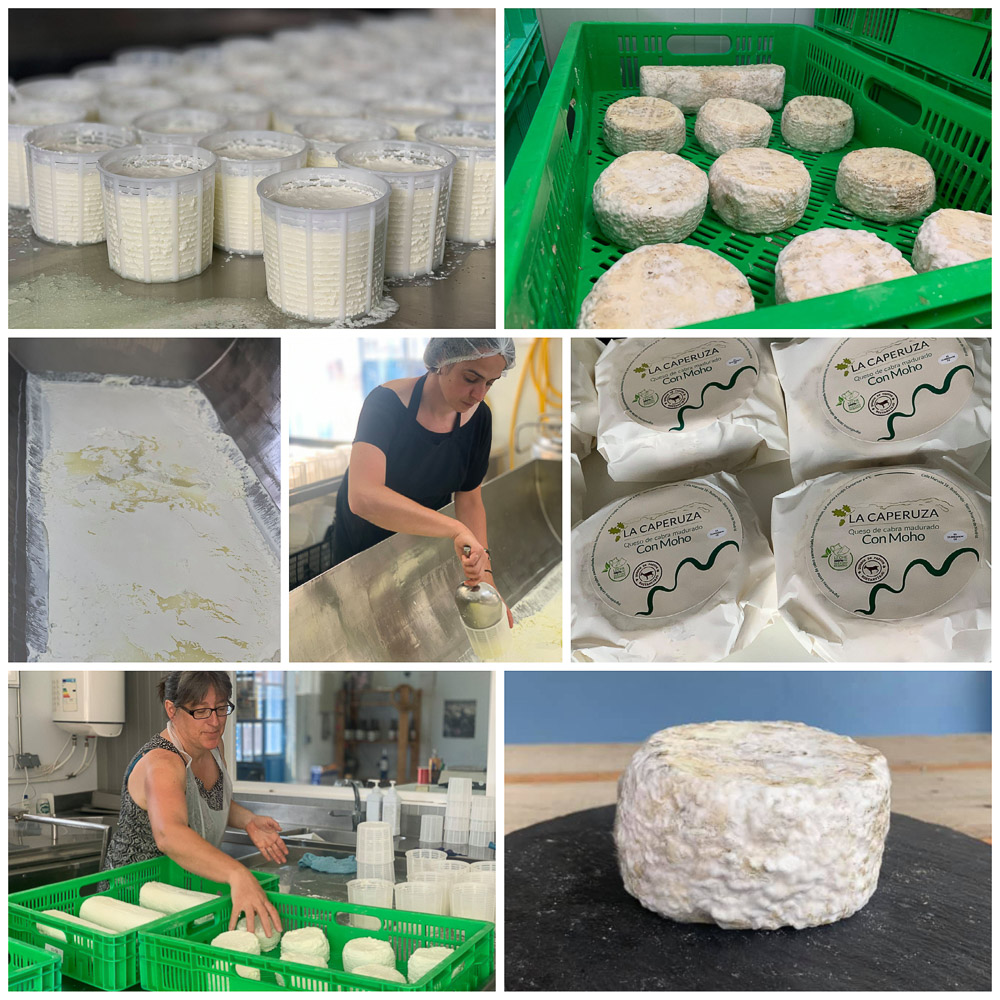 Uno de los mayores reclamos de la quesería artesanal La Caperuza es su famoso Queso de Moho