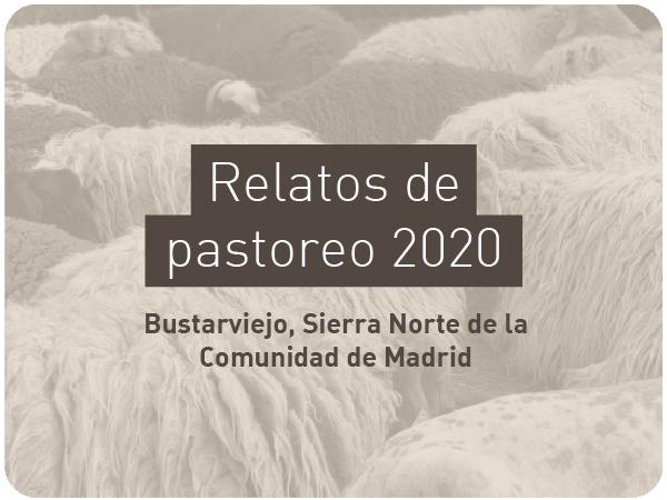 Proyecto-relatos-2020-4
